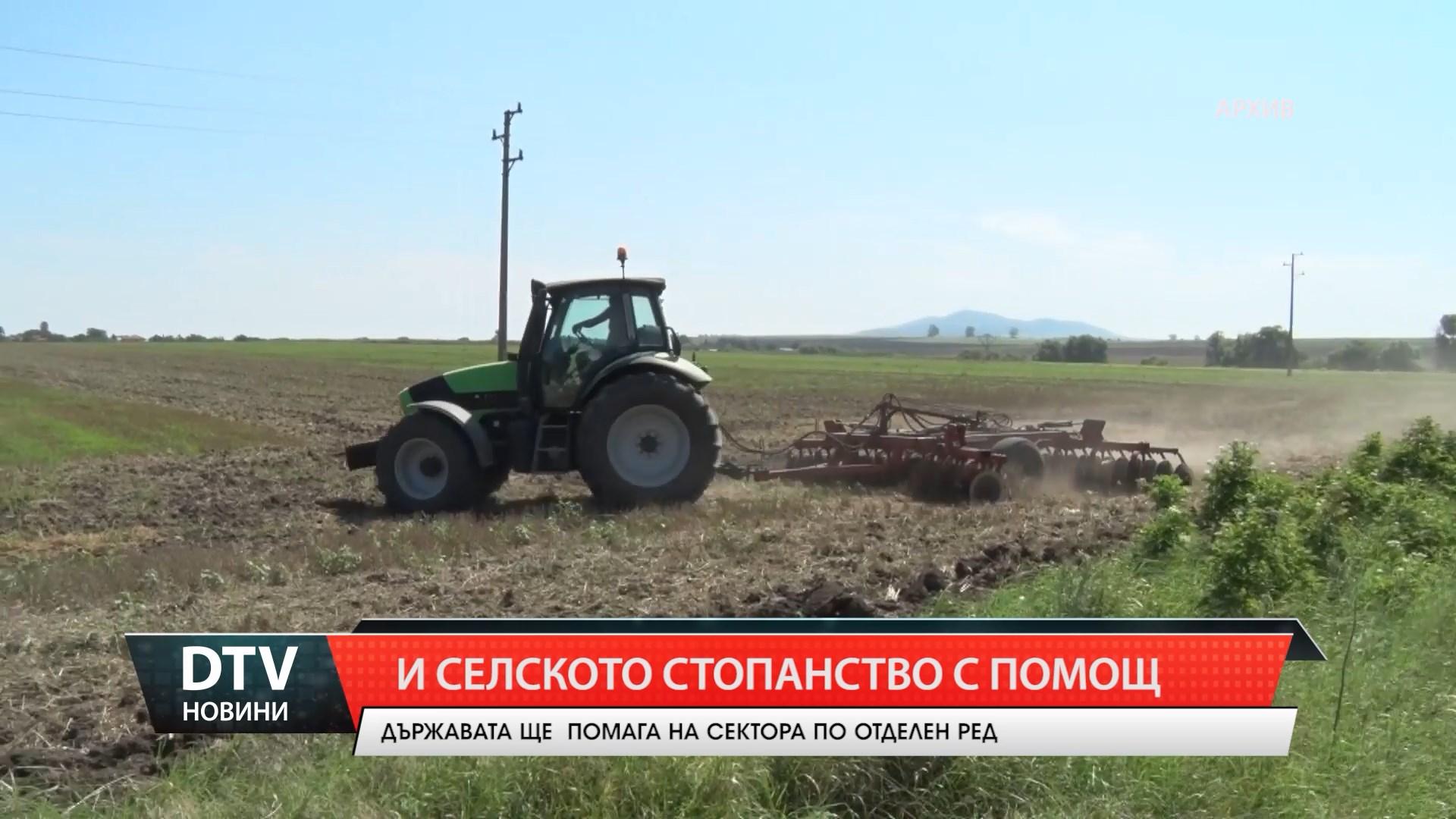 Държавата ще помага и на сектор Селско стопанство