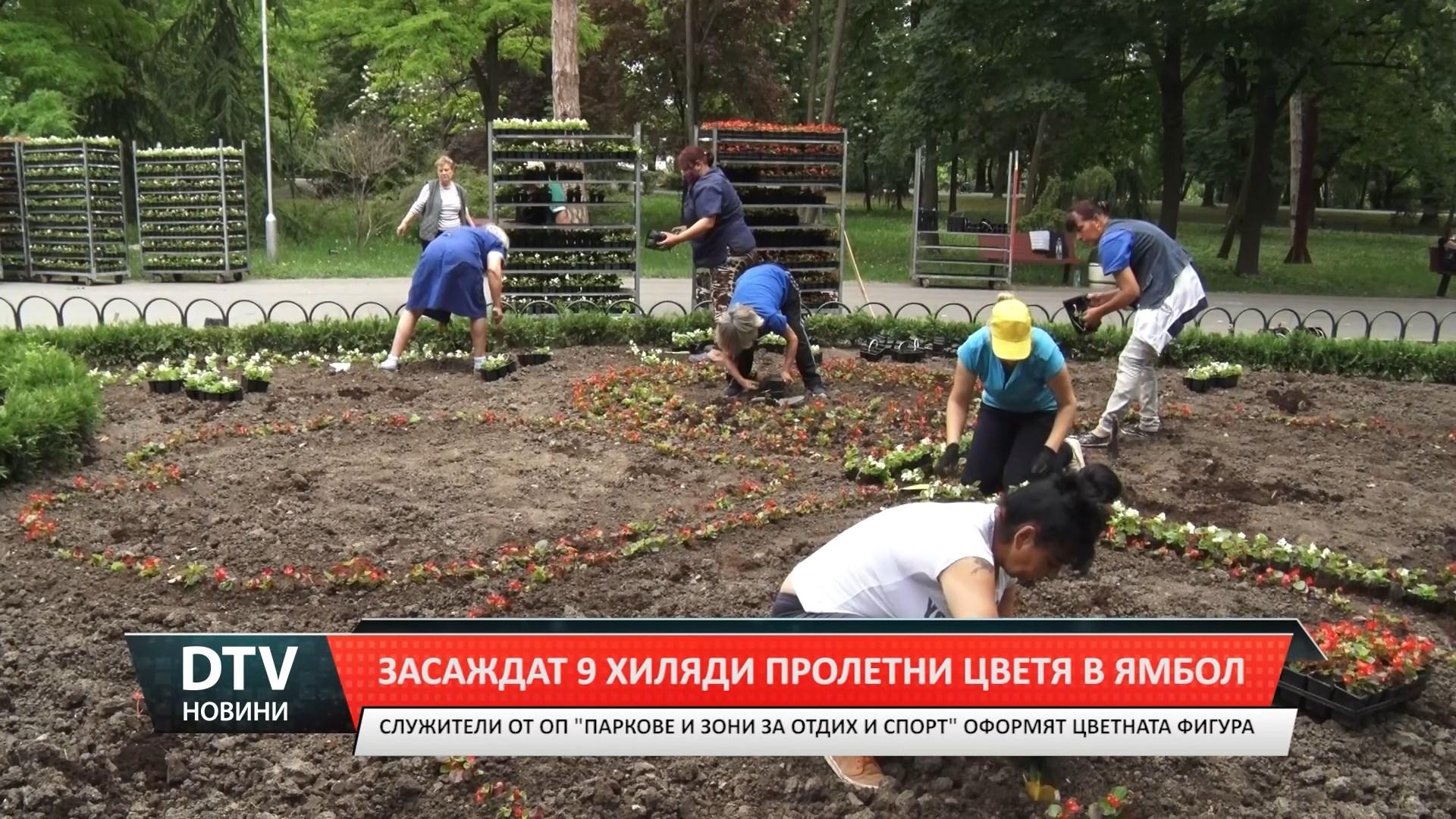 9000 цветя ще засадят в градския парк