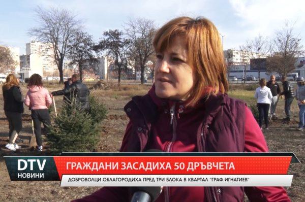 Граждани засадиха 50 дръвчета