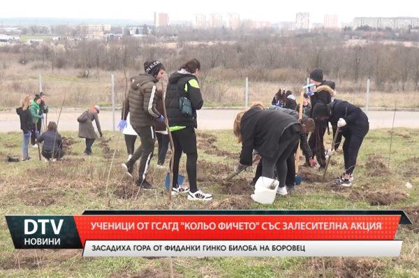 """Ученици от ГСАГД""""Кольо Фичето"""" засадиха гора от гинко билоба"""